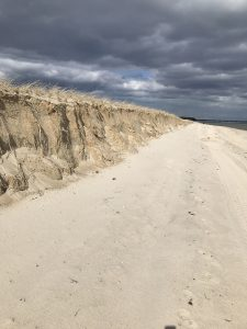 Dune at the end of Popponesset Island