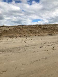 Dune across from family shellfish area